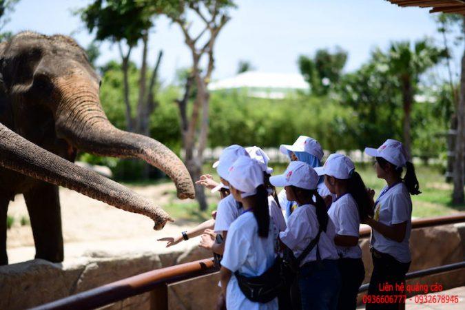 """Các bạn nhỏ Indonesia phấn khích trước """"River Safari"""" tại Nam Hội An"""