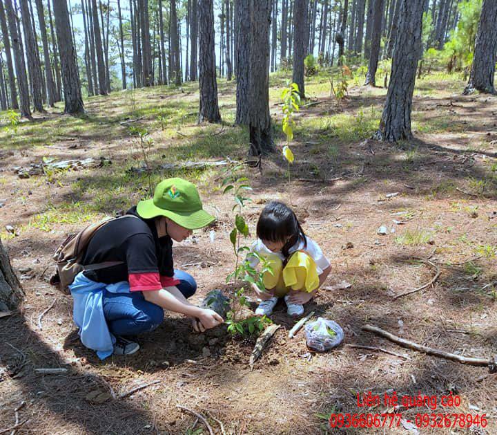 Cùng trẻ em trồng 110 cây xanh tạo cảnh quan
