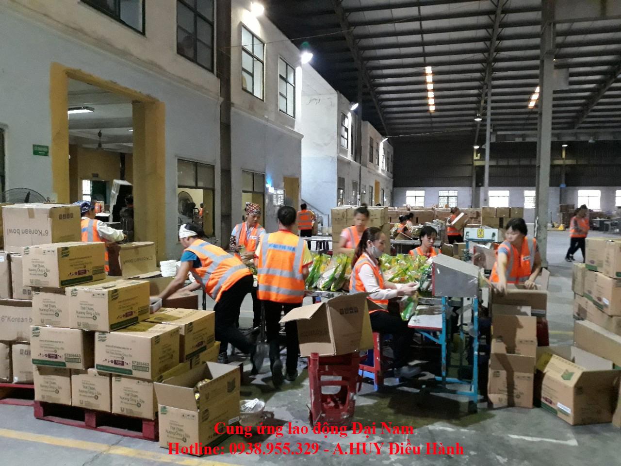 Dịch vụ cung ứng lao động, cho thuê lao động giá rẻ